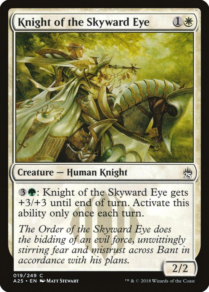 Knight+of+the+Skyward+Eye