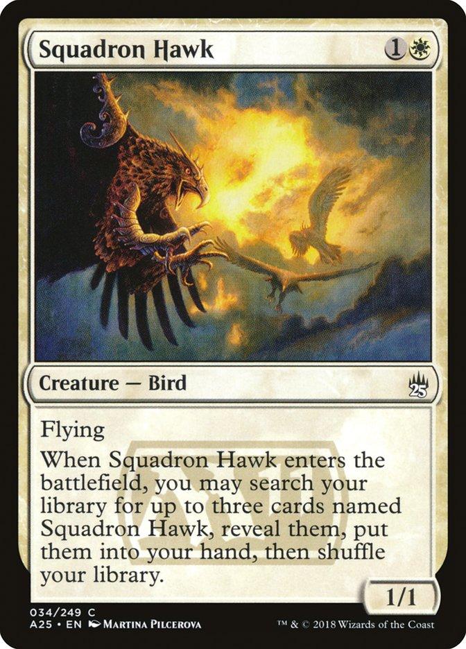Squadron+Hawk