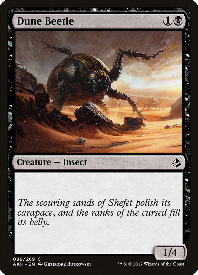 Dune+Beetle
