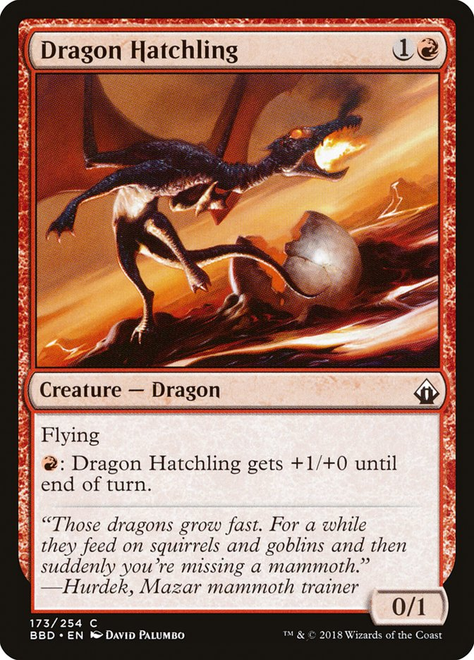 Dragon+Hatchling