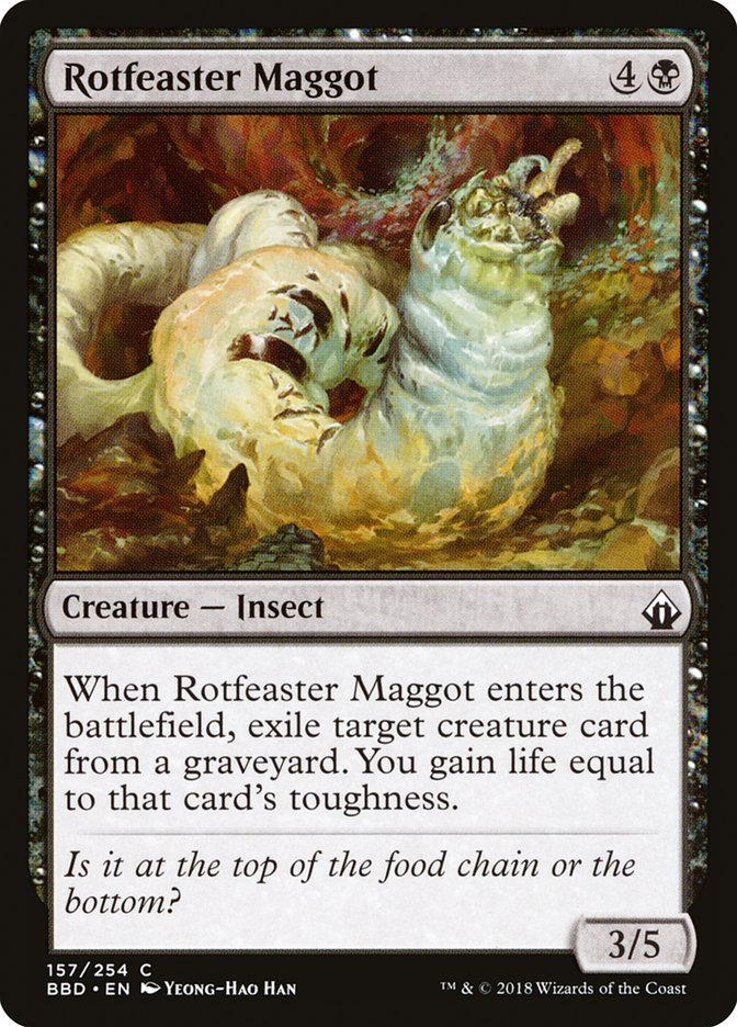 Rotfeaster+Maggot