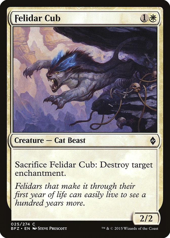 Felidar+Cub