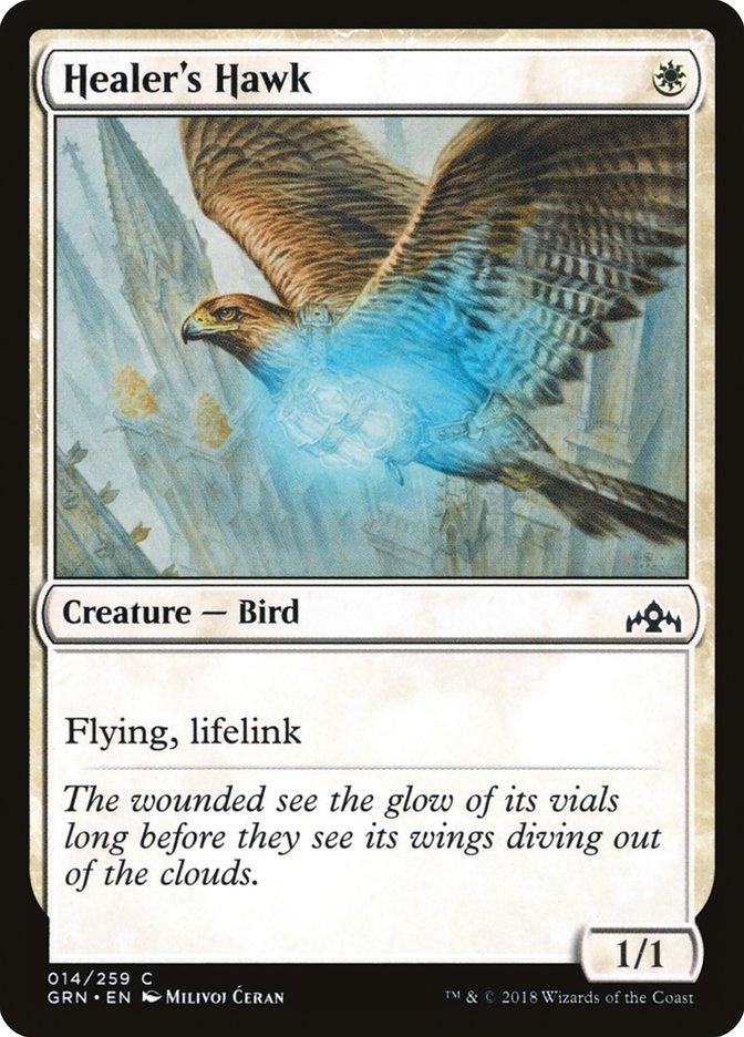 Healer%27s+Hawk