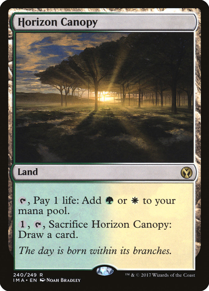Horizon+Canopy