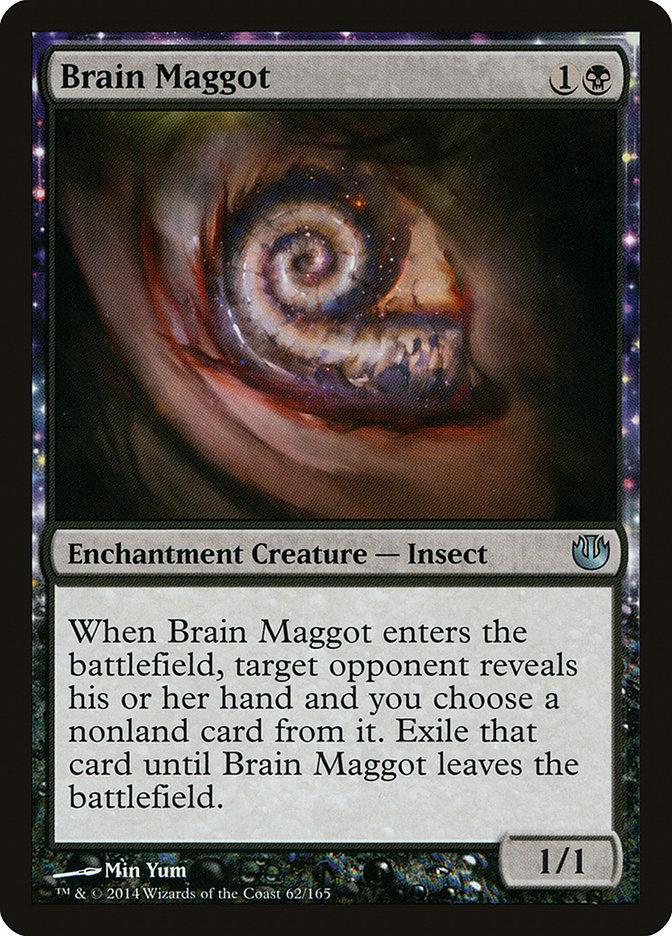 Brain+Maggot