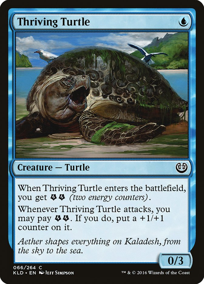 Thriving+Turtle