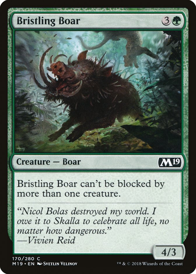 Bristling+Boar