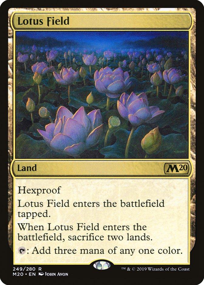 Lotus+Field
