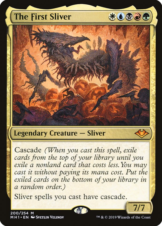 The+First+Sliver
