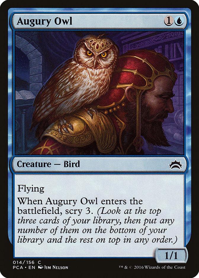 Augury+Owl