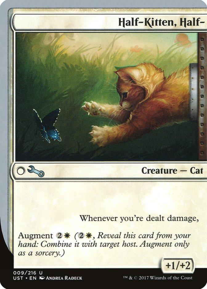 Half-Kitten%2C+Half-
