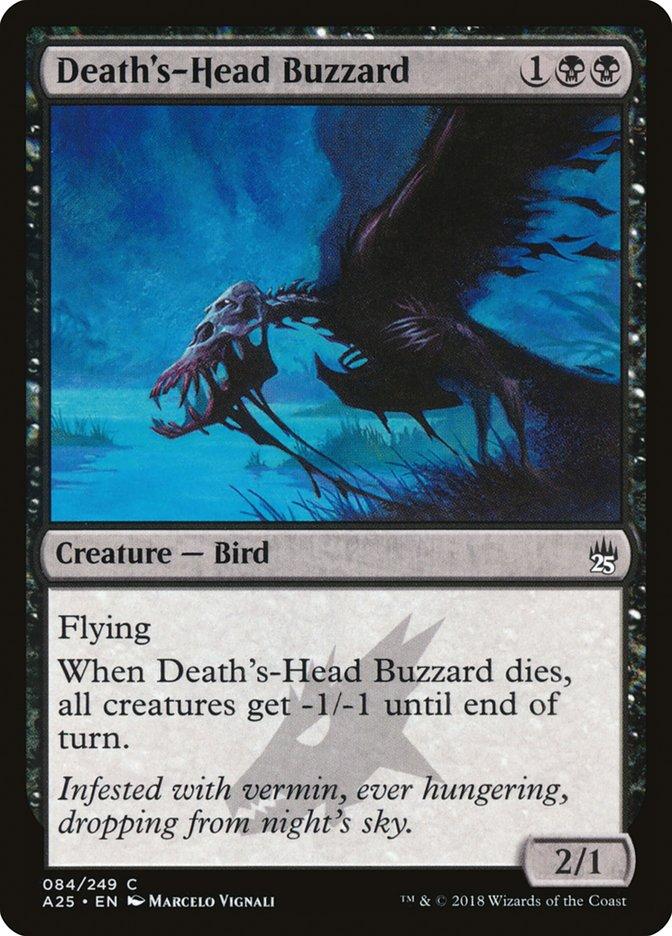 Death's-Head Buzzard