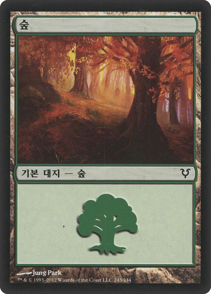 Forest (#243) (Avacyn Restored)