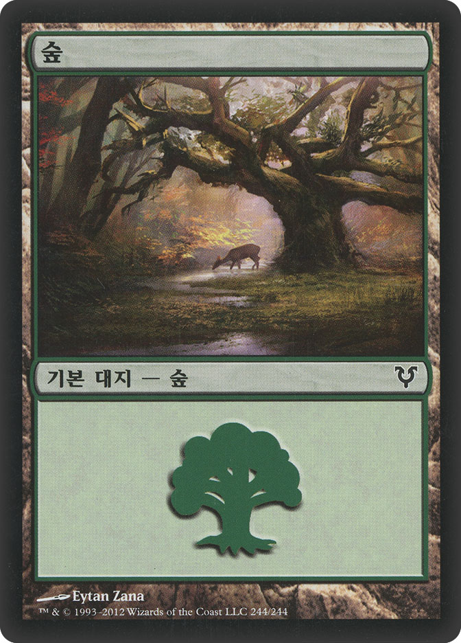 Forest (#244) (Avacyn Restored)