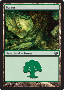 Forest (#31)