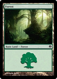 Forest (#80)