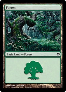 Forest (#81)