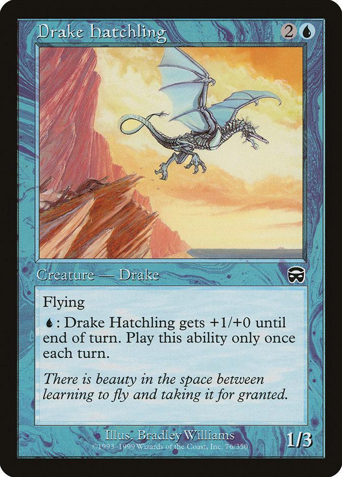 Drake Hatchling
