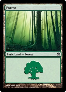Forest (#70)
