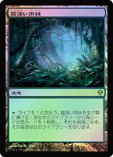 Misty Rainforest (Zendikar)