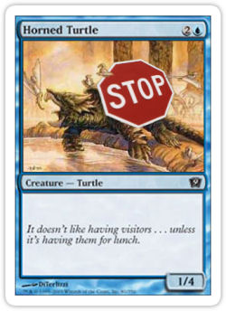 In this respect, Horned Turtle is a lot like Cory Braiterman.