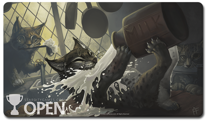 Open Playmat - Kitchen Lynx