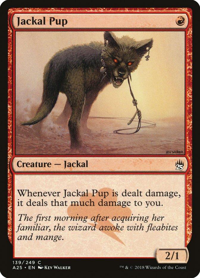 Jackal+Pup
