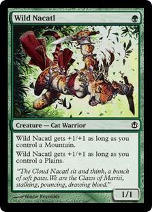 Wild+Nacatl