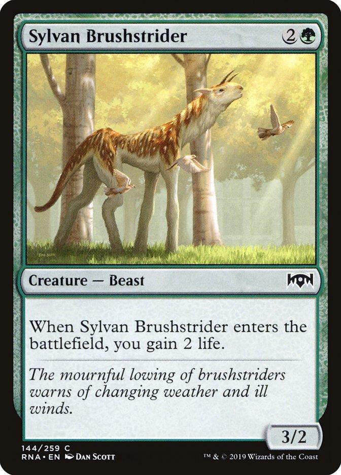Sylvan+Brushstrider