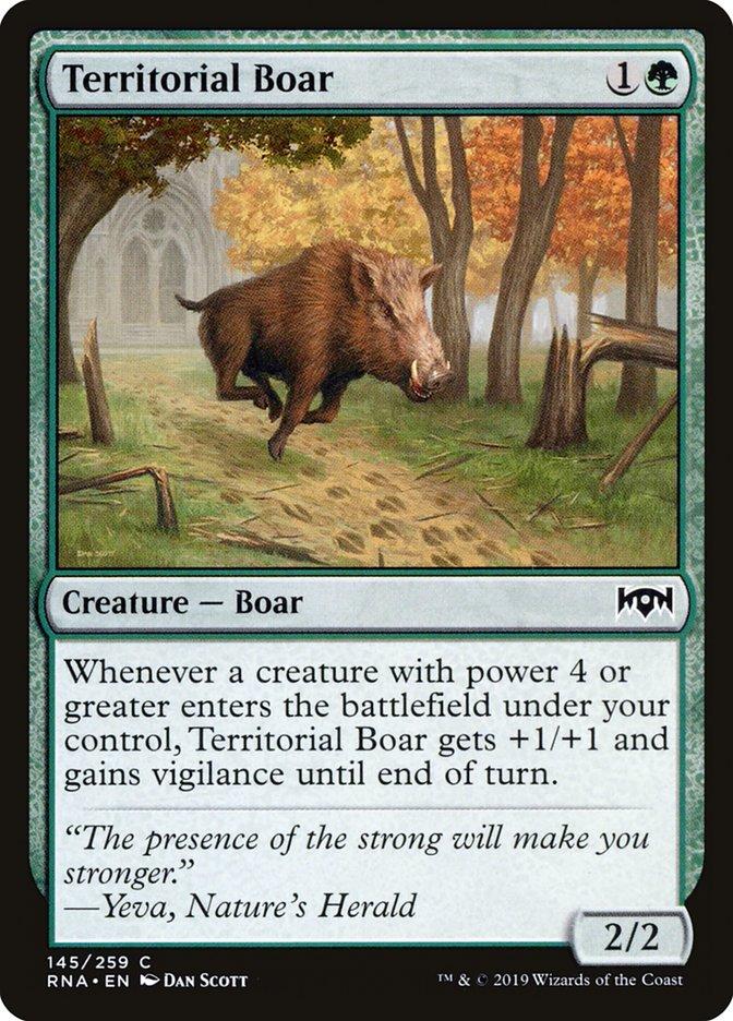Territorial+Boar