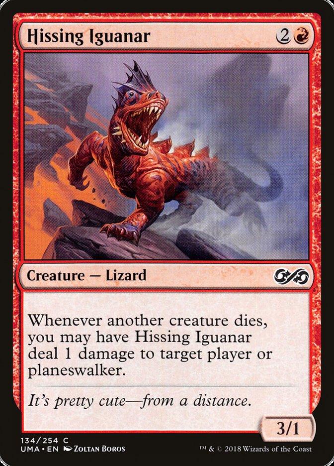 Hissing Iguanar