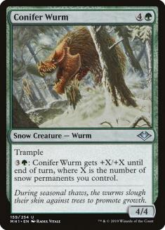 Conifer Wurm