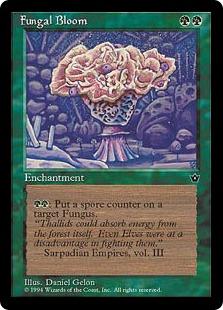 Fungal Bloom