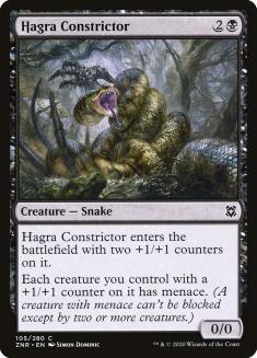 Hagra Constrictor