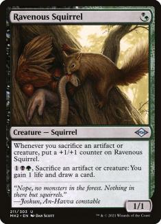 Ravenous Squirrel