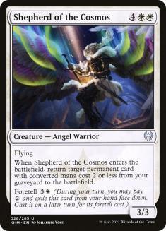 Shepherd of the Cosmos