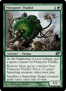 Vitaspore Thallid
